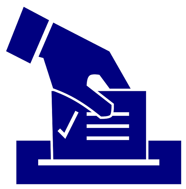 Ballot Election - Free vector graphic on Pixabay (666608)