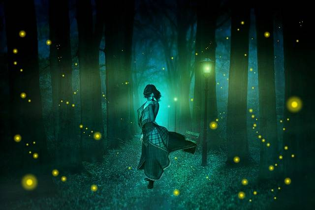 Night Fireflies Street Lights - Free photo on Pixabay (673627)