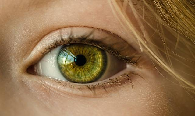 Eye Iris Look - Free photo on Pixabay (676945)