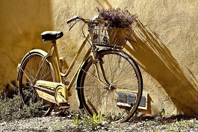 Bike Bicycle Two - Free photo on Pixabay (703475)