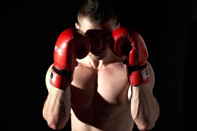Boxing Sport Sports - Free photo on Pixabay (706505)