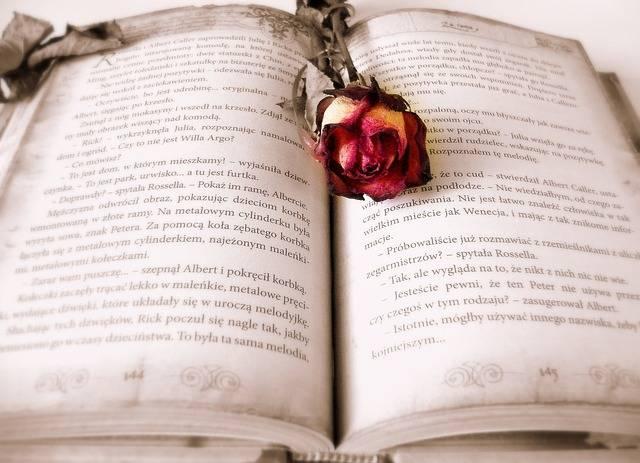 Book Reading Love Story - Free photo on Pixabay (708807)
