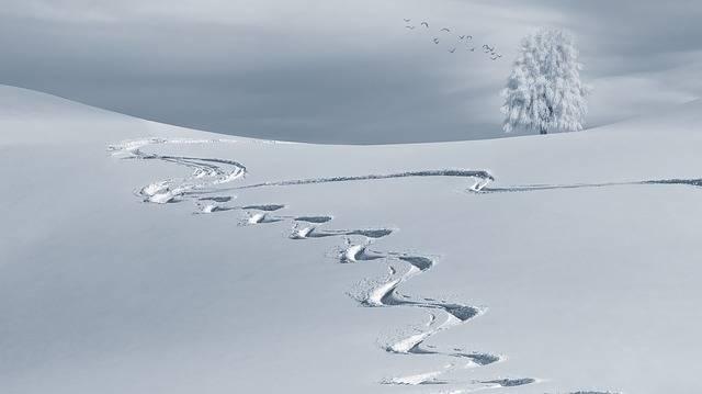 Wintry Backcountry Skiiing Ski - Free photo on Pixabay (709048)