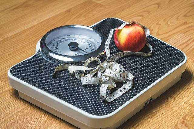 Weight Loss Nutrition - Free image on Pixabay (712098)