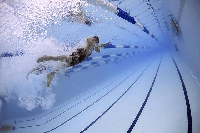 Swimmers Swimming Race - Free photo on Pixabay (713051)