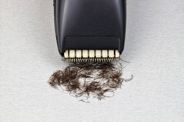 Razor The Long-Hair Cutter Shaver - Free photo on Pixabay (714777)