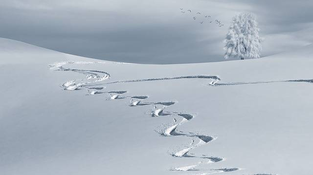 Wintry Backcountry Skiiing Ski - Free photo on Pixabay (716323)