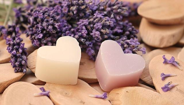 Lavender Heart Wood Soap - Free photo on Pixabay (716598)