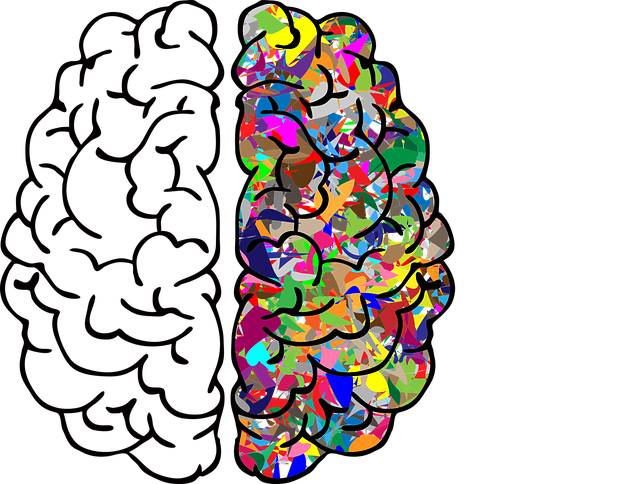 Brain Mind A - Free vector graphic on Pixabay (717781)