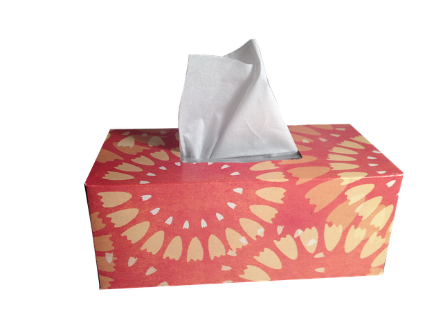 Tissues Box Of Hygiene - Free photo on Pixabay (718557)
