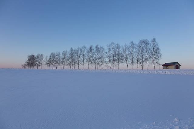 Hokaido Snow Blue Sky - Free photo on Pixabay (728666)