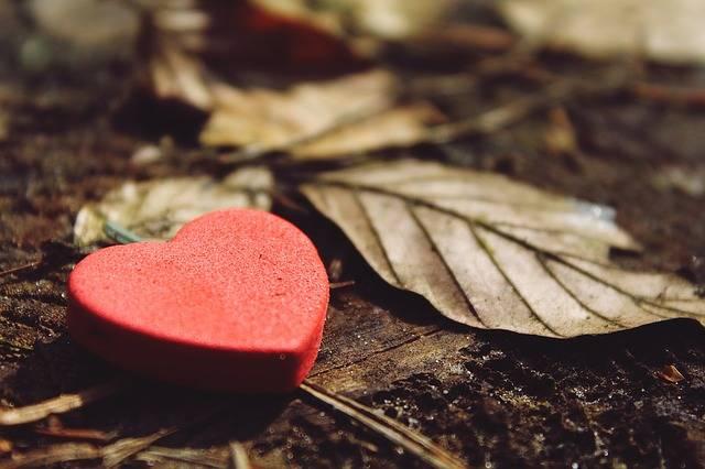 Heart Love Deco - Free photo on Pixabay (729090)