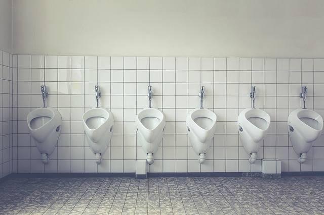 Toilet Loo Wc Public - Free photo on Pixabay (730454)