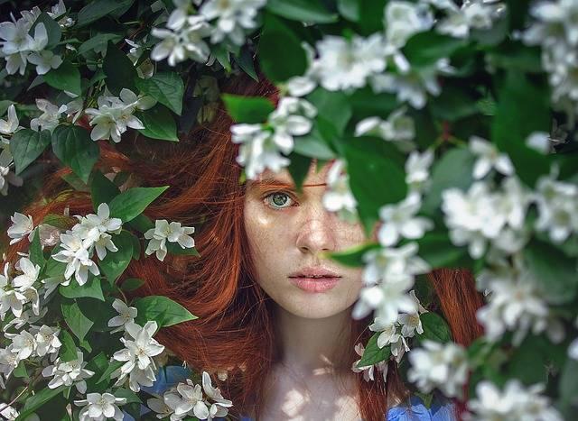 Girl Beauty Fairytales - Free photo on Pixabay (732337)