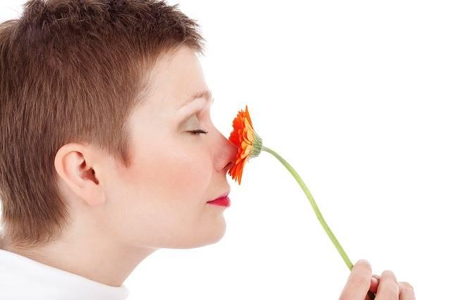 Adult Beauty Face - Free photo on Pixabay (732756)