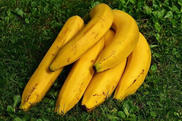Bananas Fruits Fruit - Free photo on Pixabay (733045)