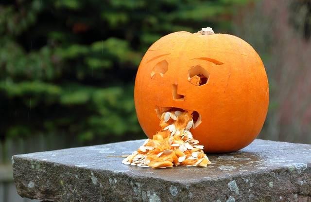 Pumpkin Halloween Nausea - Free photo on Pixabay (733426)