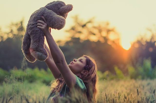 Field Teddy Bear Grass - Free photo on Pixabay (733434)