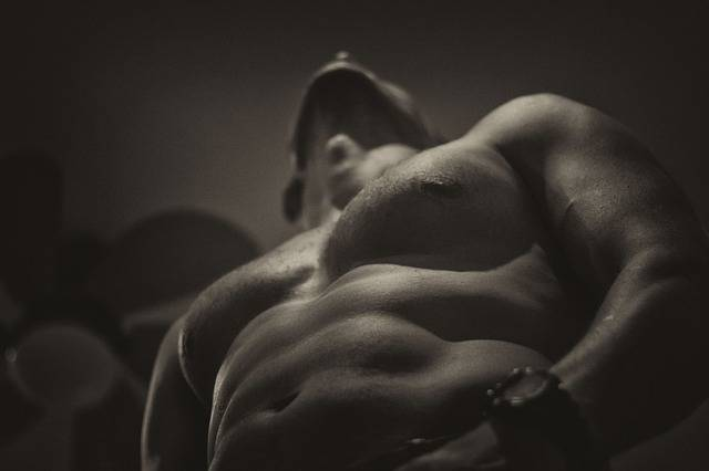 Naked Upper Body Fit - Free photo on Pixabay (736197)