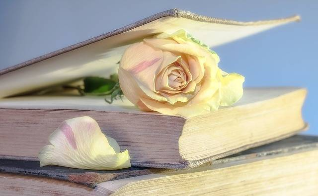 Rose Book Old - Free photo on Pixabay (737572)