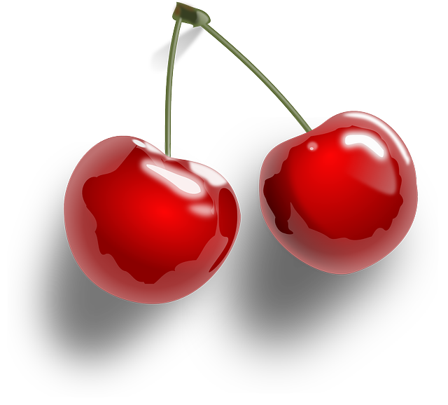 Cherries Fruit Red - Free vector graphic on Pixabay (739466)