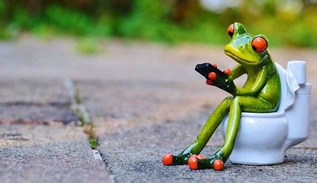 Frog Mobile Phone Toilet - Free photo on Pixabay (743390)