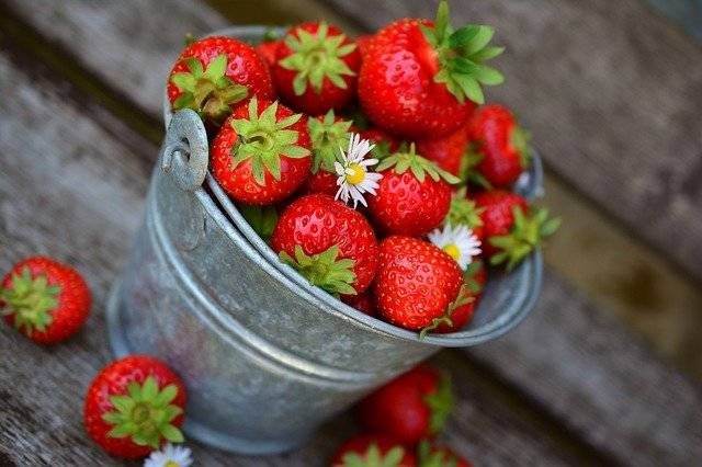 Strawberries Fruit Delicious - Free photo on Pixabay (743424)