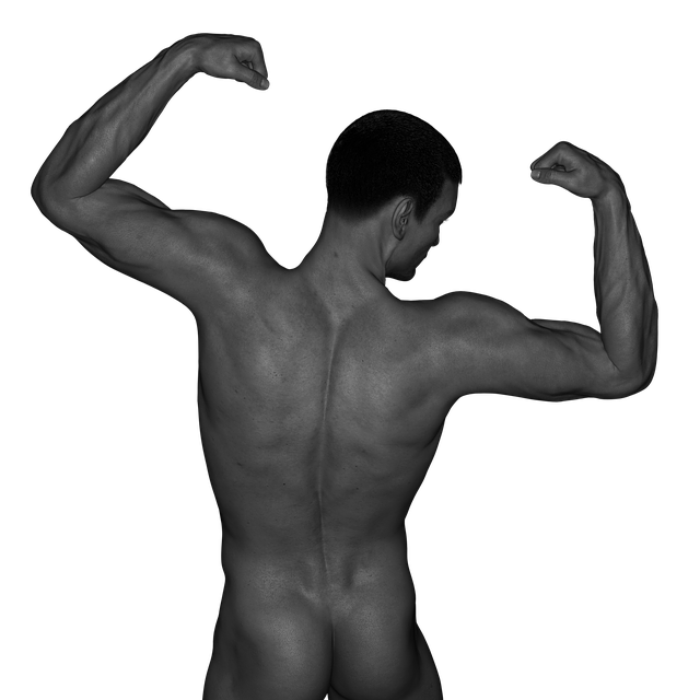 Man Muscles Act - Free photo on Pixabay (745444)