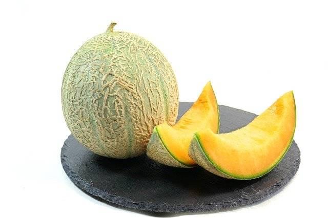 Melon Fruit - Free photo on Pixabay (746676)
