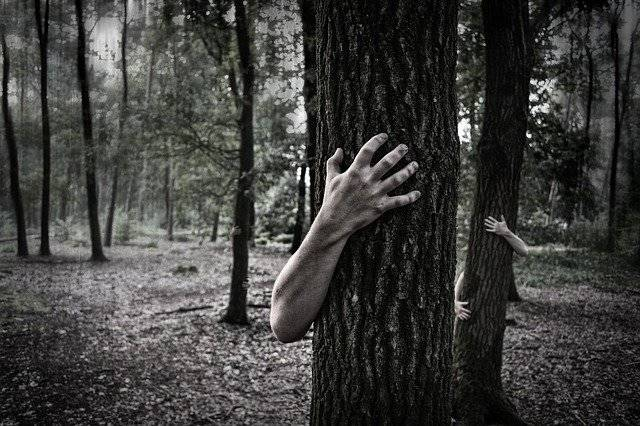 Hands Trunk Creepy - Free photo on Pixabay (747746)