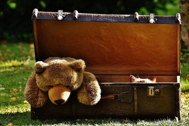 Luggage Antique Teddy - Free photo on Pixabay (747847)