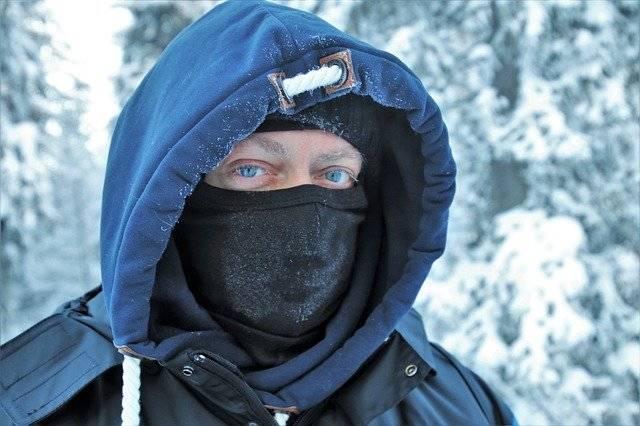 Lapland Face It - Free photo on Pixabay (748736)