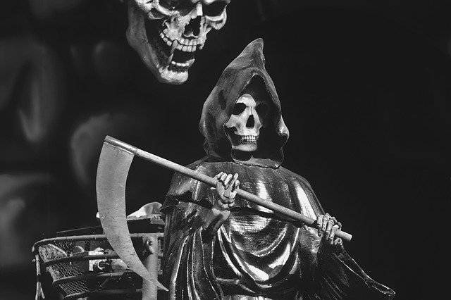 Halloween Skeleton Skull And - Free photo on Pixabay (749130)