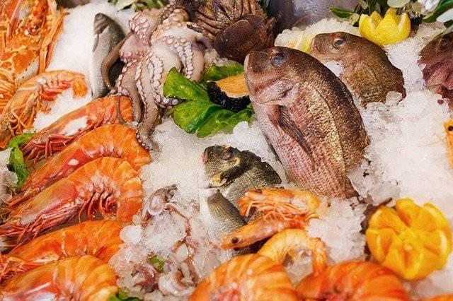 Seafood Food Healthy - Free photo on Pixabay (749838)