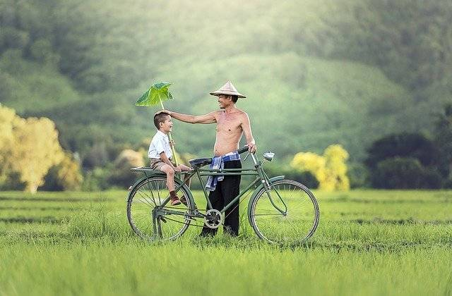 Bicycle Relationship Parrent - Free photo on Pixabay (750245)