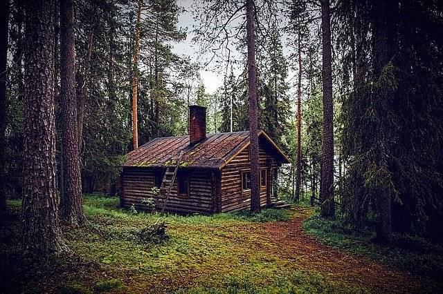 Hut Forest Seefeld Log - Free photo on Pixabay (750550)