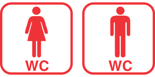 Wc Toilet Vector - Free vector graphic on Pixabay (750989)