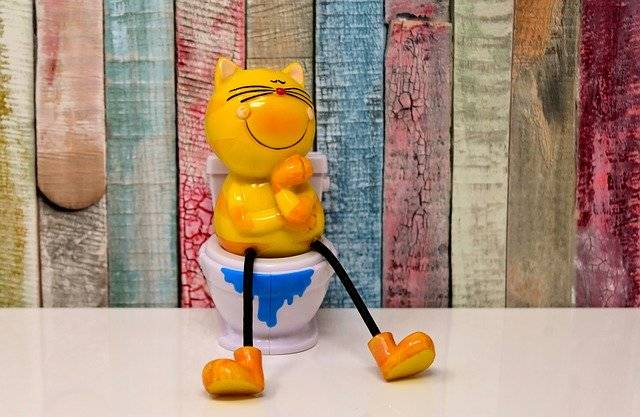 Litter Box Toilet Cat - Free photo on Pixabay (751518)