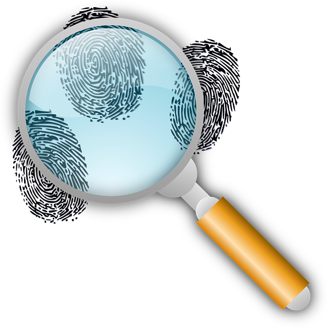 Detective Clues Find - Free vector graphic on Pixabay (751523)