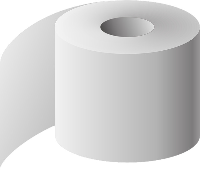 Toilet Paper The Roll Of - Free vector graphic on Pixabay (753039)