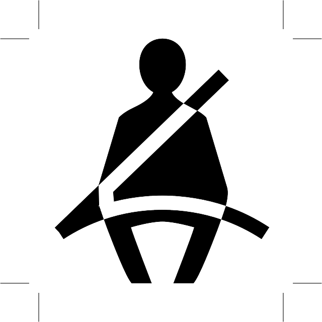 Fasten Seat Belt Buckle Up On - Free vector graphic on Pixabay (753856)