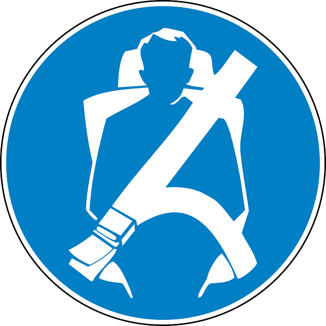 Seat Belt Safety In - Free vector graphic on Pixabay (754065)