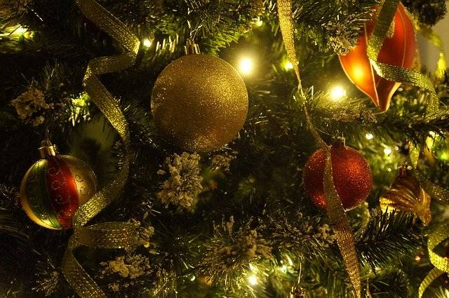 Christmas Tree New Year'S Eve - Free photo on Pixabay (754748)