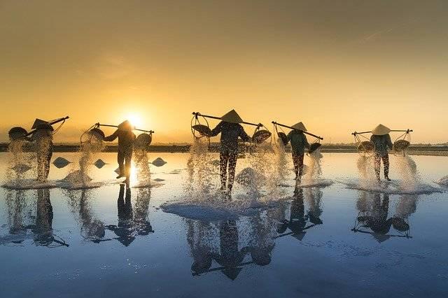 Salt Harvesting Vietnam Water - Free photo on Pixabay (755182)