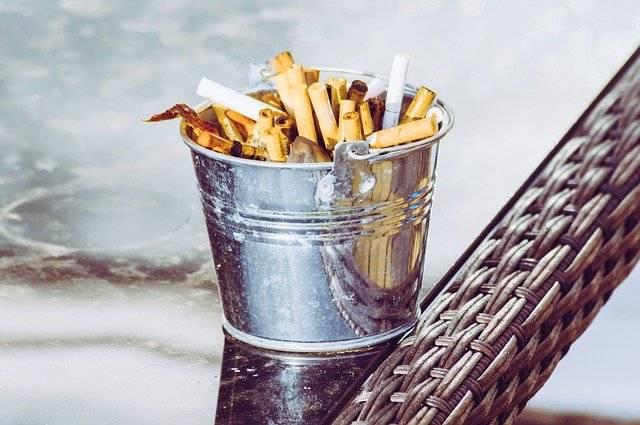 Ashtray Cigarette Fags - Free photo on Pixabay (755232)