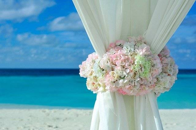 Beach Curtain Decorations Flower - Free photo on Pixabay (755695)