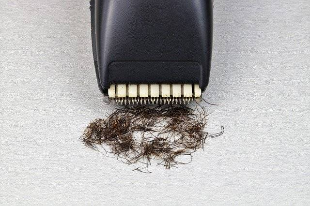 Razor The Long-Hair Cutter Shaver - Free photo on Pixabay (756033)