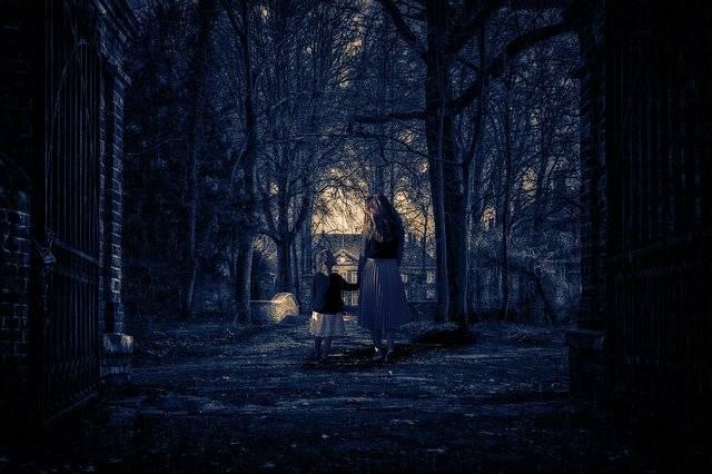 Night House Woods - Free photo on Pixabay (756933)