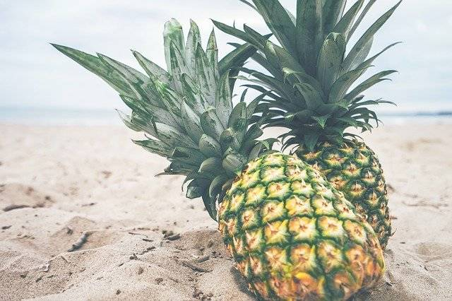 Pineapples Fruit Beach - Free photo on Pixabay (757492)