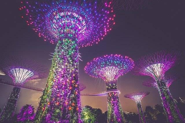 Artificial Trees Singapore - Free photo on Pixabay (757594)